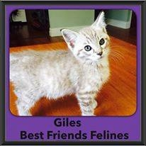 2015 - Adopted - Giles