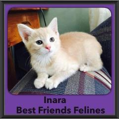 2015 - Adopted - Inara