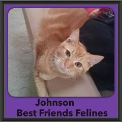 2015 - Adopted - Johnson