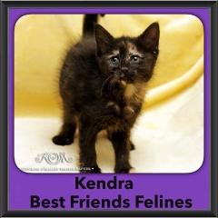2015 - Adopted - Kendra