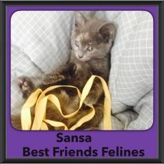 2015 - Adopted - Sansa