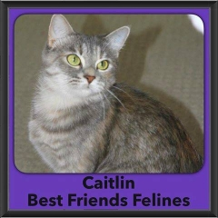 2016-Adopted-Caitlin