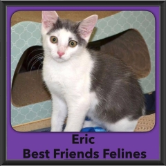 2016-Adopted-Eric