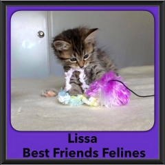 2016-Adopted-Lissa