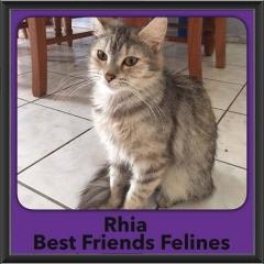 2016-Adopted-Rhia