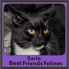 2016-Adopted-Sarin