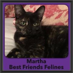 2016-Adopted-martha