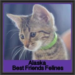 2017 - Adopted - Alaska