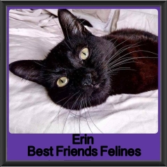 2017 - Adopted - Erin
