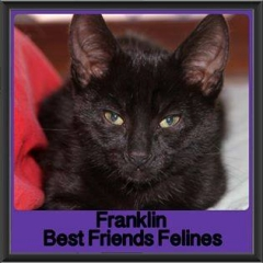 2017 - Adopted - Franklin
