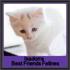 2017 - Adopted - Isadorra