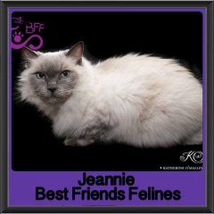 2017 - Adopted - Jeanie