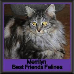 2017 - Adopted - Merrilyn