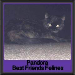 2017 - Adopted - Pandora