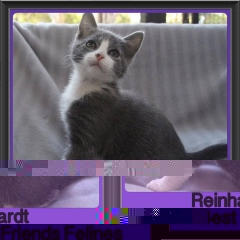 2017 - Adopted - Reinhardt