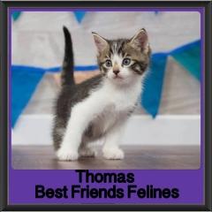 2017 - Adopted - Thomas