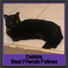 2018 - Debbie