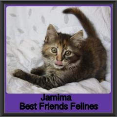 2018 - Jamima