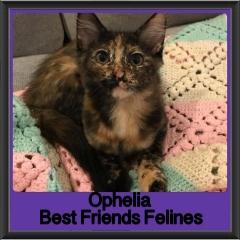 2018 - Ophelia
