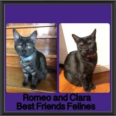 2018 - Romeo and Clara
