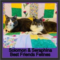 2018 - Solomon and Seraphina
