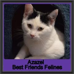 2019-Azazel