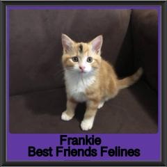 2019-Frankie1