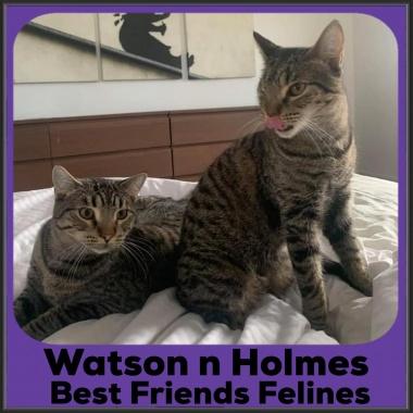 2021-Watson-Holmes